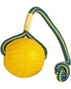 http://www.k9-k4.be/files/modules/products/121/photos/product_starmark-fantastic-foam-ball-on-a-rope-dog-toy-large.jpg